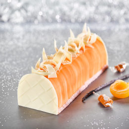 Bûche Vanille Tahitensis, Caramel & Abricot