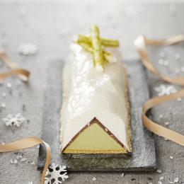 Buche glacée coco pistache noisette - cresco - Condifa