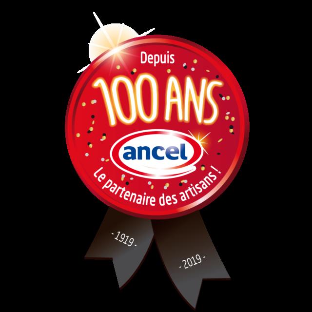 medaille ancel 100 ans le partenaire des artisans