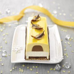 Recette de bûche vanille Bourbon passion chocolat kalamansi croquant Sébalcé - Condifa